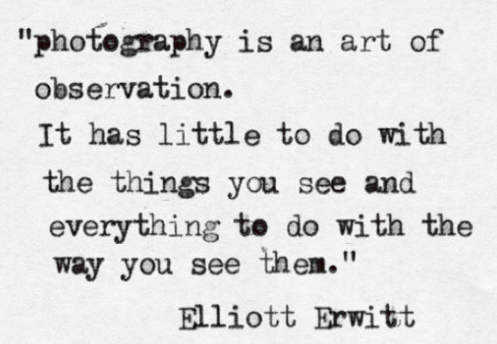 Quote Elliott Erwitt photography