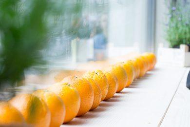 sinaasappels-susanne-sterkenburg