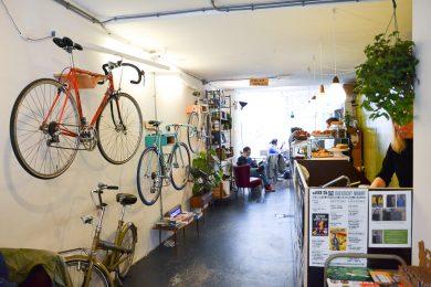 fietsen-blackbird-susanne-sterkenburg