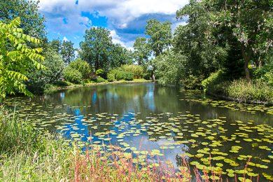 botanische-tuinen-susanne-sterkenburg